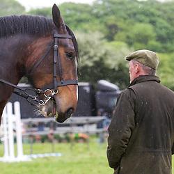 Otley Show 2017 Ridden Heavy Horses