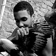 APUNTES SOBRE MI VIDA: LA PASTORA I - 2009/10<br /> Photography by Aaron Sosa<br /> Andry Montilla. Hijo de Irma y hermano de Maikel. En el patio trasero de la casa tiene una gran jaula llena de gallos, patos y gallinas. Es amante de los animales. <br /> La Pastora, Caracas - Venezuela 2009<br /> (Copyright © Aaron Sosa)