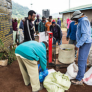 Porters weighing in at Londorossi Gate, one of the National Park ranger gates to Kilimanjaro National Park, and the gate one must check in to when climbing the Lemosho Route of Mount Kilimanjaro.