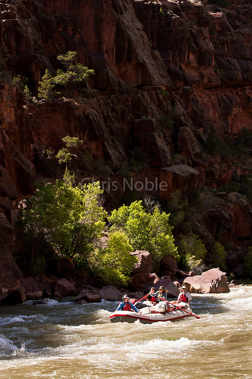 A group of river rafters descends the Green River through Lodore Canyon, Colorado and Utah, USA.