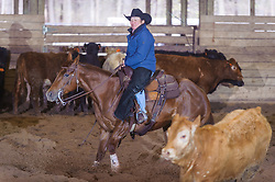 April 30 2017 - Minshall Farm Cutting 2, held at Minshall Farms, Hillsburgh Ontario. The event was put on by the Ontario Cutting Horse Association. Riding in the 2,000 Limited Rider Class is Katie Leung on Missancattin owned by the rider.