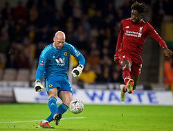 WOLVERHAMPTON, ENGLAND - Monday, January 7, 2019: Wolverhampton Wanderers' goalkeeper John Ruddy (L) and Liverpool's Divock Origi (R) during the FA Cup 3rd Round match between Wolverhampton Wanderers FC and Liverpool FC at Molineux Stadium. (Pic by David Rawcliffe/Propaganda)