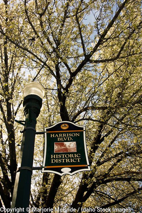 Historic Harrison Boulevard, Boise, Idaho.