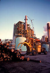 Stock photo of industrial machinery handling logs at a logging facility