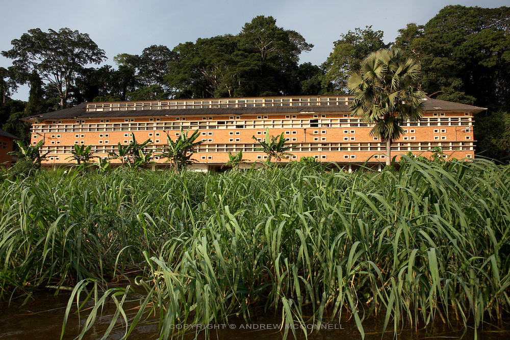 The largest building in Yangambi faces the riverfront and was perviously a maintenance centre and repair garage for the entire facility. It now lies abandoned and derelict, on Saturday, Dec. 6, 2008..Yangambi Research Station is the former Belgian headquarters for all major scientific ecological, biological and agricultural research in Africa between the 1930's and 1960. It stretches for 33 km inland from the river and contains 250 residential houses and many research buildings and offices, including a herbarium and library. At it's height approximately 250 scientists and 500 technicians were based here along with 1000 more Belgian workers ranging from doctors to bricklayers. With the families and constant visitors to the station included the total population of would have ranged in the several thousands. Abandonment began in 1960 with independence and although Congolese attempted to maintain Yangambi, sometimes in co-operation with the Belgians, the facility began to fall into disrepair through the 70's and 80's. War in the 1990's halted all potential for progress and for the past decade a skeleton crew has made a futile attempt to stave off further decline.