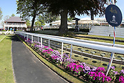 Flowers provide colour to the Parade Ring edging for the first day of the Dante Festival at York Racecourse, York, United Kingdom on 15 May 2019.