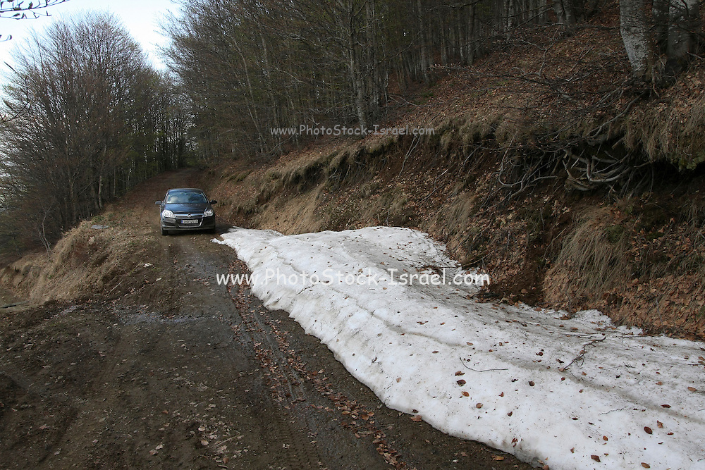 Greece, Macedonia, Korifi village A snow covered dirt road in the mountains leading to the village