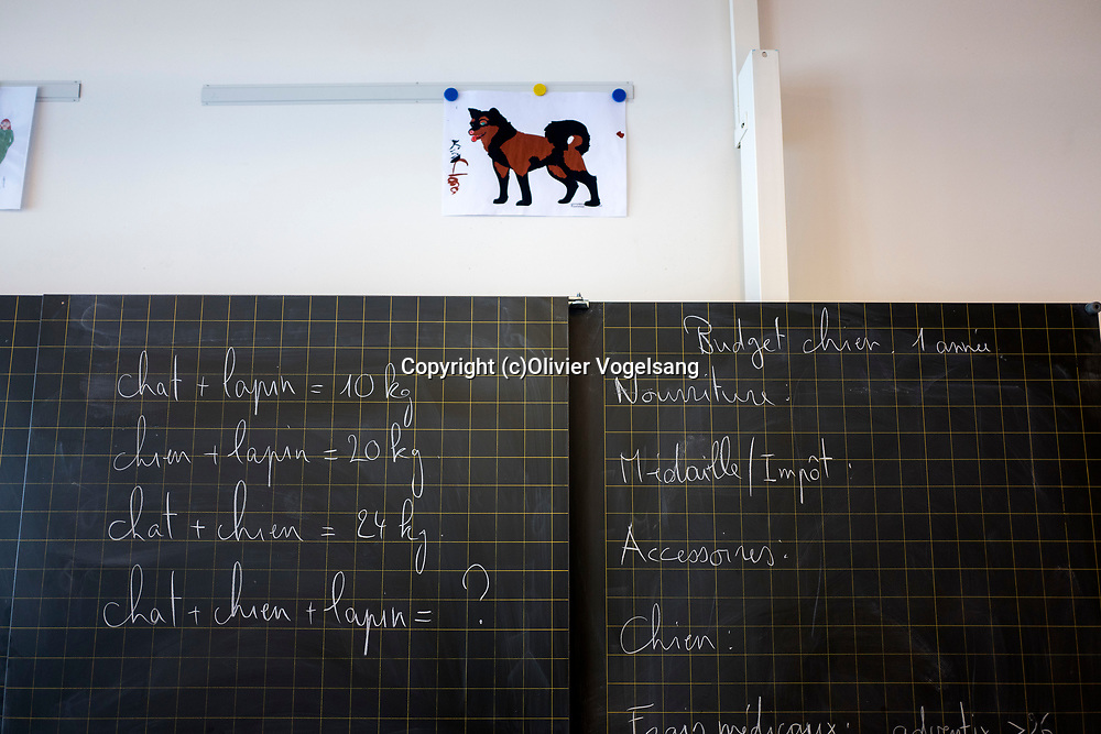 Saint-Cergue, décembre 2017. reportage dans une école spécialisée à St-Cergue, dans laquelle un chien scolaire est utilisé depuis le début de l'année pour venir en aide et calmer les élèves. C'est le premier chien à être utilisé de la sorte en Suisse romande. © Olivier Vogelsang