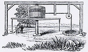 A horse-gin, also called horse-whin,  horse-whim or whimsey.  A type of capstan powered by a horse, and used for raising ore, water , etc., from a mine. Engraving from 'The Imperial Dictionary of the English Language' (London, 1884).