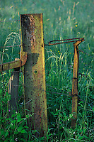 Old rusty fence and fencing wire in the meadow, Mullerthal trail, Mullerthal, Luxembourg