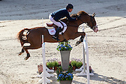 Michael Whitaker - Viking<br /> FEI European Championships 2013<br /> © DigiShots
