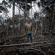 Brasile, Amazzonia, garimpo de Juma. Le miniere a cielo aperto del garimpo de Juma, dove la vita dei minatori scorre tra pericolo per un lavoro al limite e deforestazione incontrollata. Aspettando di trovare l'oro che cambi la loro vita. In questa foto un minatore deforesta una zona per cosi preparare il terreno da scavare in cerca di oro. Brazil, Amazonia, garimpo de Juma. The open pit mines of garimpo de Juma, where the miners work flows between danger and uncontrolled deforestation. Waiting to find the gold that changes their lives. In this picture a miner cut trees for an area so prepare the ground to dig for gold.