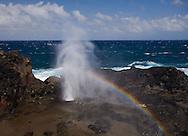 Scenes from Maui, Hawaii.