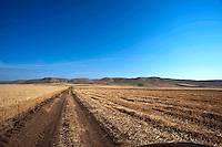 In giro per la campagna murgese, tra Poggiorsini,Gravina ed Altamura.