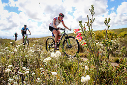 Marianne Bergli riding through the fynbos during Stage 1 of the Cape Pioneer Trek, on 17th of October 2016<br /> <br /> <br /> Photo by: Oakpics/Cape Pioneer Trek/SPORTZPICS<br /> <br /> <br /> {dem16gst}