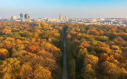 Berlin, Germany. 6 November, 2018. Spectacular late autumn colours of trees in Berlin's famous Tiergarten park in the centre of the city. The modern skyline of Potsdamer Platz is in the distance.