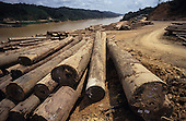 Logging Camp Deforestation Sarawak
