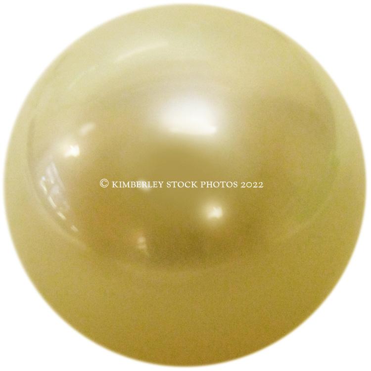 A golden pearl (Pinctada maxima)