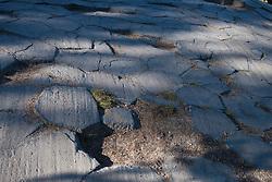 Tile pattern of 120 degree shrinkage cracks on top of columnar basalt rock formations, Devils Postpile National Monument, California, United States of America