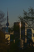 Part of the downtown Toronto skyline at sunset from Riverdale Park with tree foreground.