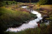 The Georgia Ports Authority wetlands near the Garden City Terminal, Thursday, August 14, 2014, in Savannah, Ga.  (GPA Photo/Stephen B. Morton)