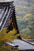 At the temple of Tenryuji, in Arashiyama, on the outskirts of Kyoto, rain falls near one of the temple's roofs..