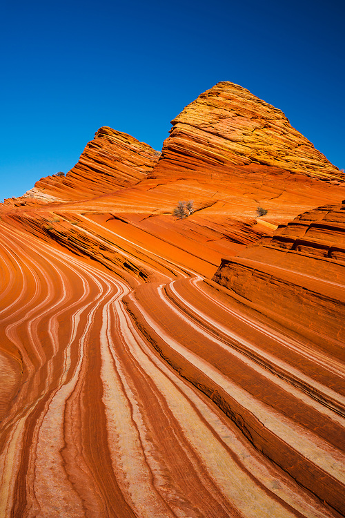 The Zebra Stripes of Coyote Buttes North. Vermilion Cliffs National Monument in northern Arizona.