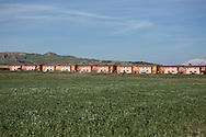 Mineo, Sicily, Italy, April 2015<br /> In the region of Catania, Sicily, lies the biggest center for asylum seekers in Europe, &quot;CARA&quot; (Centro di Accoglienza per Richiedenti Asilo), near the village of Mineo. Over four thousand migrants live in this ancient village built initially to host families of US army soldiers, from a military base nearby. The center is built like a real village with its health center, nursery, administrative buildings, dining hall, stadium ... After what is often a dreadful crossing of the Mediterranean Sea, the survivors have to wait up to fifteen months to obtain a possible residence permit. View of center CARA of Mineo&copy; Jean-Patrick Di Silvestro