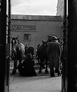 Ballinasloe Horse Fair, Co. Galway.25/04/1957
