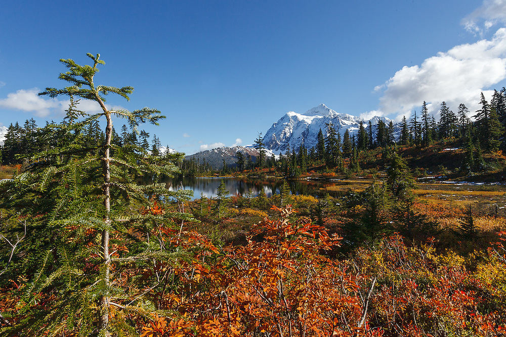 View of Mount Shuksan, North Cascades National Park, Washington state