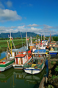 Puerto Aisen, Aisen Region, Patagonia, Chile<br />