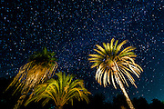 The Milky Way, San Ignacio, Baja California Sur, Mexico