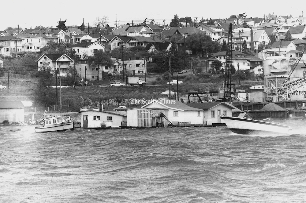 HOUSEBOATS BUFFETED: A windstorm pushed houseboats on Lake Union into a crazy pattern after setting several adrift. (Harold Smith / The Seattle Times, 1952)