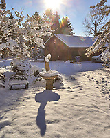 Snowy Morning. Image taken with a Leica T camera and 18-56 mm zoom lens