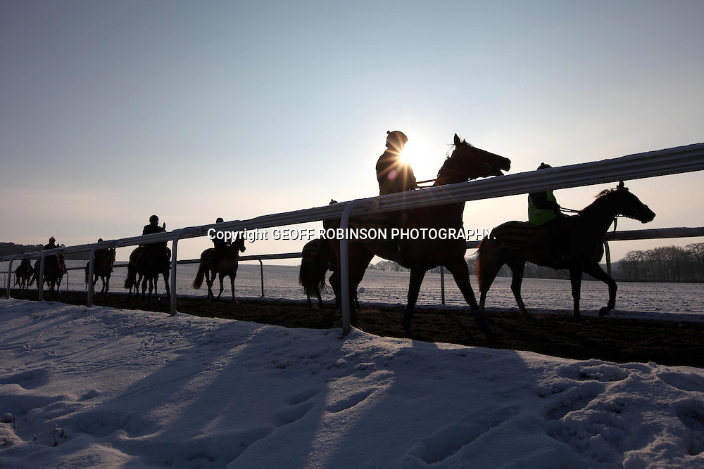 RACEHORSES ON THE GALLOPS IN NEWMARKET SUFFOLK ON FRIDAY MORNING DESPITE THE SUB ZERO TEMPERATURES AND THE OVERNIGHT SNOWFALL... Race horses were out training as usual this morning (Fri) despite the snow and ice...The horses were seen galloping along the all-weather track in Newmarket, Suffolk...Most race meetings across the country have been cancelled this weekend due to the cold snap, with many race courses frozen over or covered in snow...Meetings have been cancelled at Uttoxeter and Warwick as the courses are frozen solid and show no signs of thawing...Point-to-pint races have also been called off at Cottenham, Cambs and Godstone in Surrey.