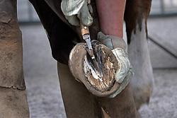 Antheunis Raf<br /> Zutendaal 2007<br /> Photo © Hippo Foto
