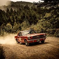 Car 26 John Yates / Joan Gee