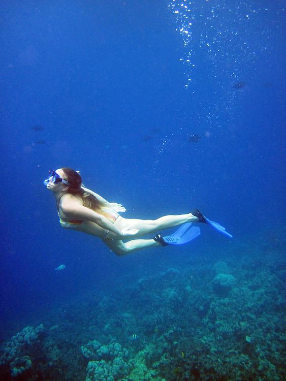 Snorkel, Cooks Inlet, Big Island, Hawaii