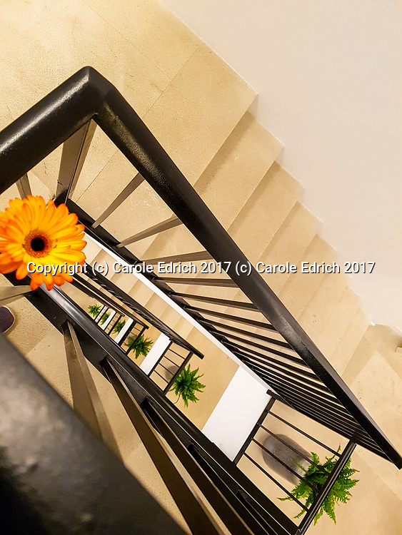 Rectangular 6 floor staircase with Gerbera flower and ferns at Nakar Hotel. (c) Carole Edrich