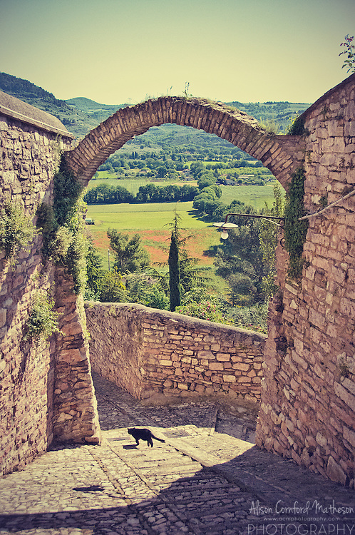 The hilltop village of Spello in Umbria, Italy For more information, please visit http://cheeseweb.eu/2013/09/photo-tour-spello-umbria-italy/