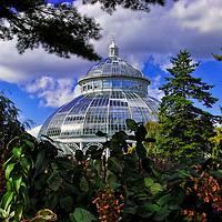 Haupt Conservatory in the Bronx Botanic Gardens, New York City.