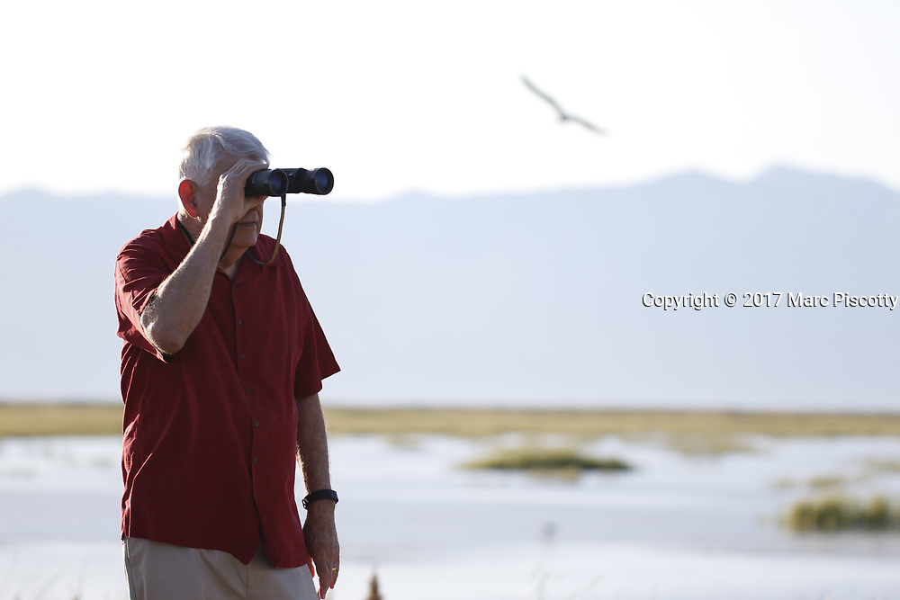 SHOT 6/30/17 6:14:53 AM - Bear River Migratory Bird Refuge is a 74,000-acre National Wildlife Refuge in Utah, established in 1928. The refuge encompasses the Bear River and its delta where it flows into the northern part of the Great Salt Lake in eastern Box Elder County. The refuge includes the James V. Hansen Wildlife Education Center and a one-way 12 mile auto route. Also includes images of fruit stands along Utah's Fruit Belt and Peach City Restaurant in Brigham City. (Photo by Marc Piscotty / © 2017)