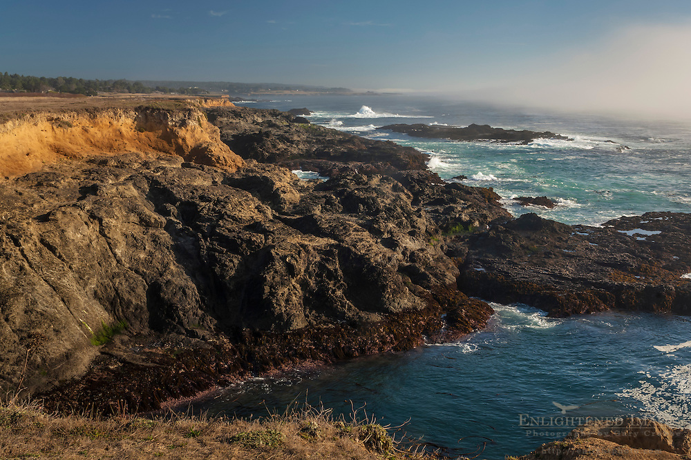 Coastal rocks and fog at Jug Handle State Natural Reserve; Mendocino County coast; California