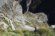 Hiking down from the village of Tresviso, in the Picos de Europa national park, a hamlet famous for its goat's cheese. The switchbacks hug the side of the hill, descending into the valley below.