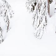 Owen Dudley gets air in the Mount Baker backcountry.