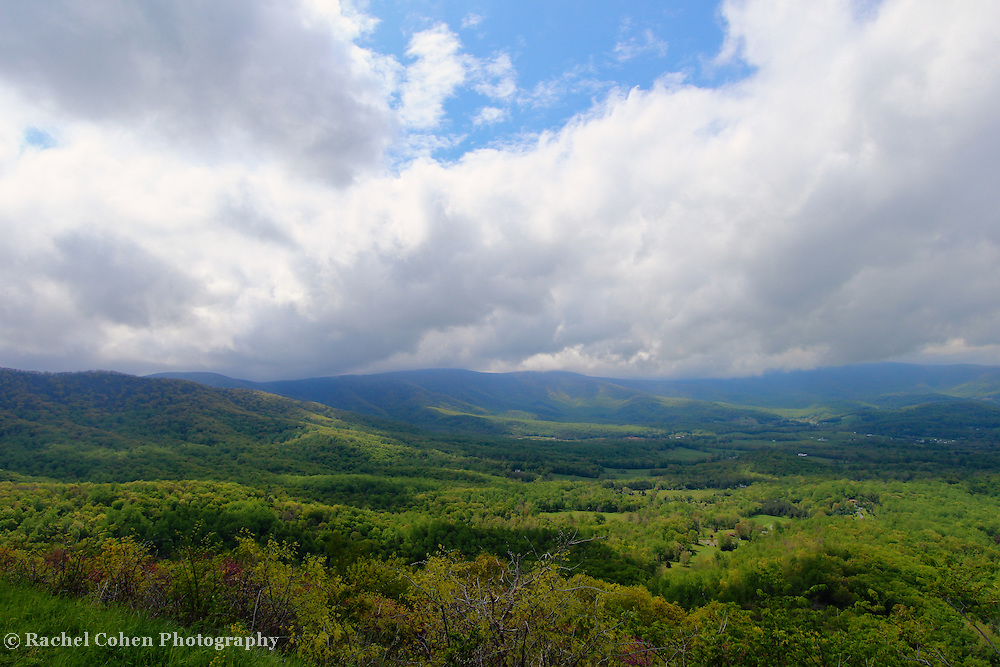 &quot;The Spring of Life&quot;<br /> <br /> Welcoming in spring in the mountains of the Blue Ridge!!<br /> <br /> The Blue Ridge Mountains by Rachel Cohen