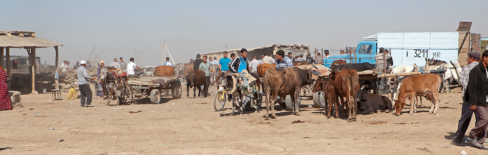 The camel market near Merv / Mary, Turkmenistan, where other agriculture is also (more commonly) sold
