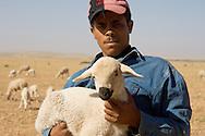 Shepherd holding lamb, Morocco
