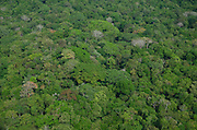 Aerial view of tropical rainforest canopy, Chagres National Park, Panama,Central America
