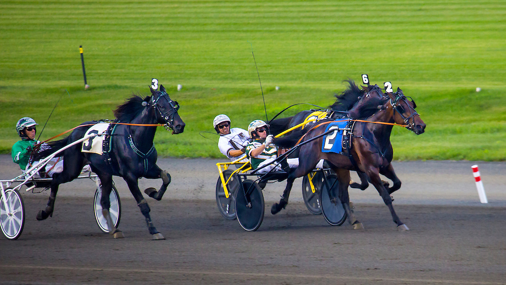 Pinkman, number two, noses out the fiercely closing number 6, Habitat, to win the Stanley Dancer memorial trot, at the Meadowlands in New Jersey last night. Pinkman was hard pressed and but held on gamely to prevail by a nose. Trotters have a different gate than pacers, who are the majority of harness racing horses. Their -- trotters -- gate is a diagonal one -- front left comes come down together with the rear right while the front right comes down with the rear left.